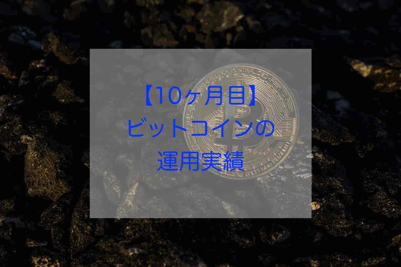 10ヶ月目ビットコイン