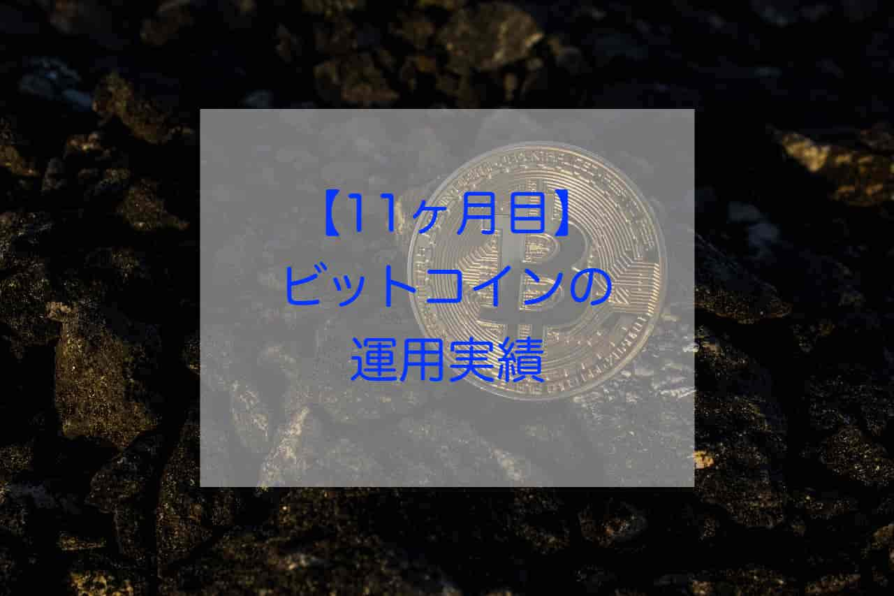 ビットコイン11ヶ月目の運用実績